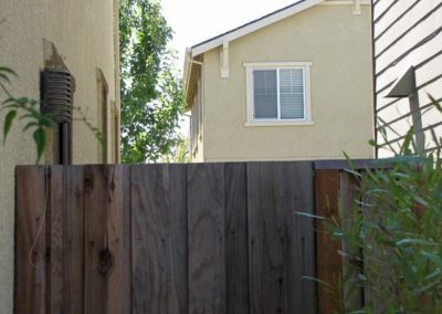 Before fence replacement
